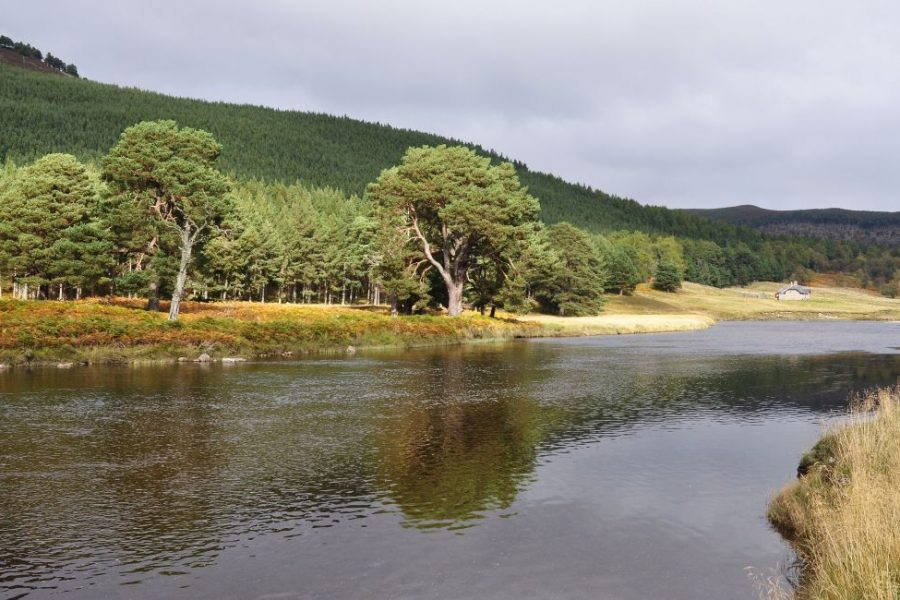 Our classic self-drive tour is perfect to discover Scotland
