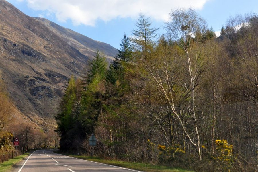 Drive across Scotland and enjoy this country for 8 days