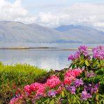 Schottlands schönste Reisezeit in der Frühling, hier mann man gut Wandern, Individualreisen oder Gruppenreisen unternehmen.